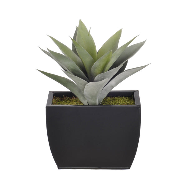 Artificial Frosted Green Succulent in Planter