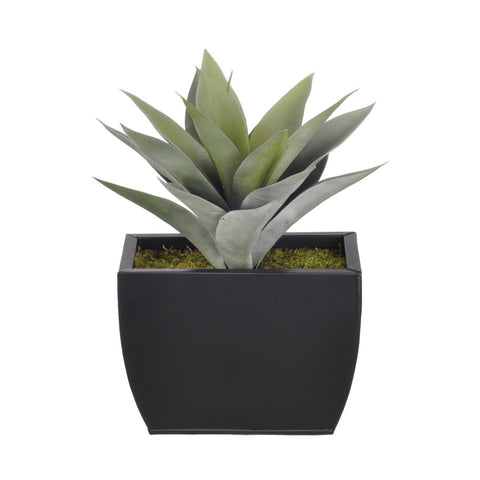 Artificial Frosted Green Succulent in Planter - House of Silk Flowers®  - 2