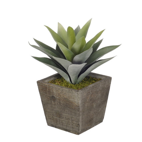 Artificial Frosted Green Succulent in Planter - House of Silk Flowers®  - 3
