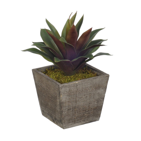 Artificial Green/Burgundy Succulent in Planter