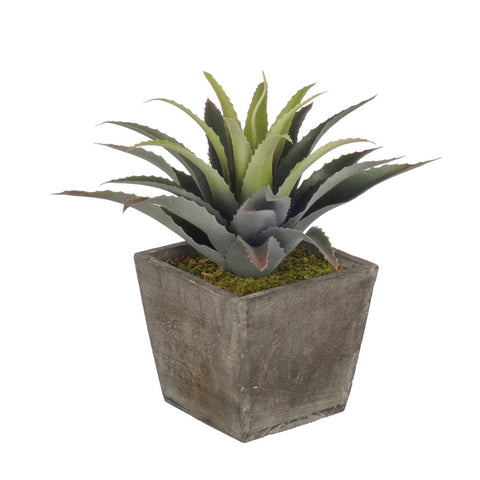 Artificial Star Succulent in Planter - House of Silk Flowers®  - 3