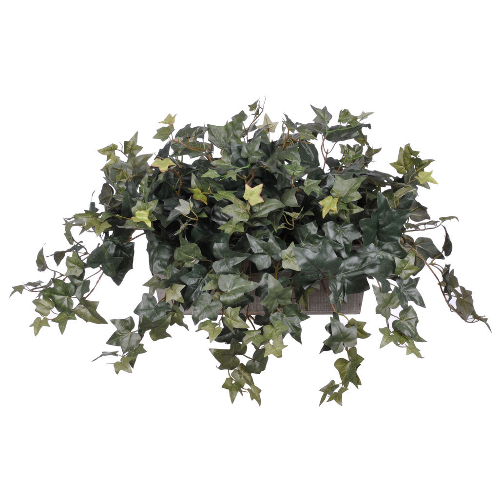 Artificial English Ivy in Ledge - House of Silk Flowers®  - 1