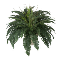 Artificial Fern in Washed Wood Ledge