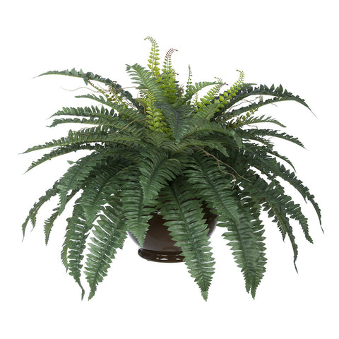 Artificial Fern in Fishbowl Vase