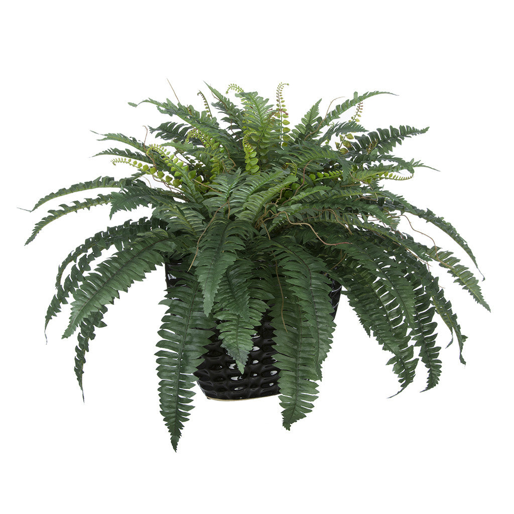 Artificial Fern in Black Quilted Ceramic Vase
