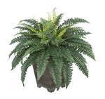 Artificial Fern in Small Washed Wood Planter - House of Silk Flowers®  - 1