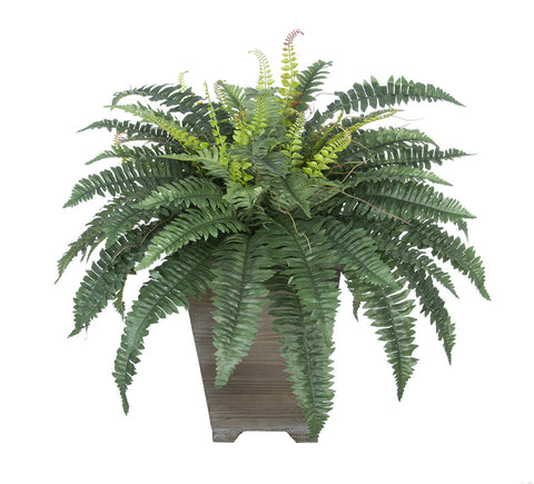 Artificial Fern in Small Washed Wood Planter - House of Silk Flowers®  - 2