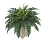Artificial Fern in Small Washed Wood Planter - House of Silk Flowers®  - 3