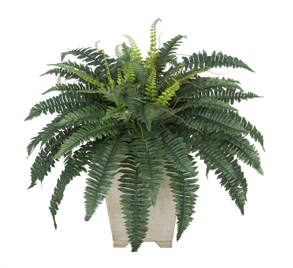 Artificial Fern in Small Washed Wood Planter - House of Silk Flowers®  - 4