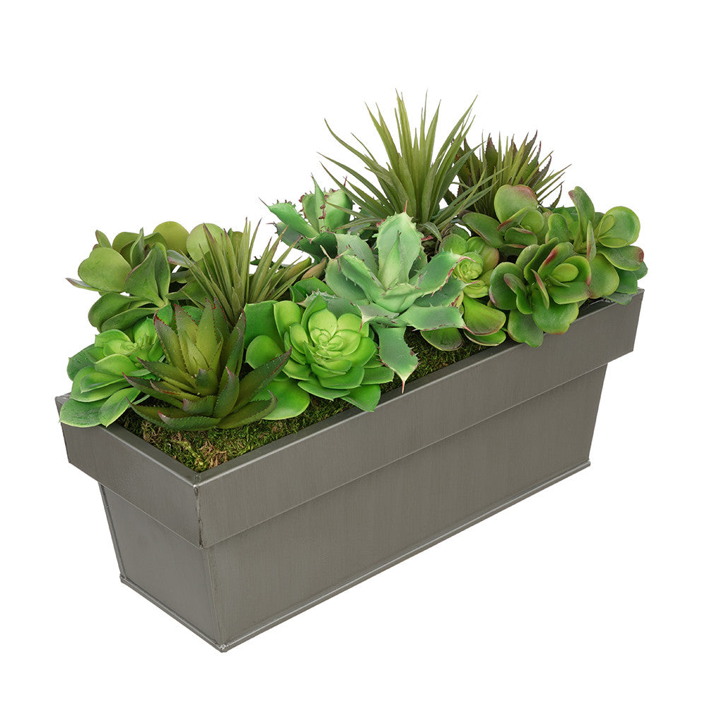 Artificial Succulent Garden in Rectangle Planter