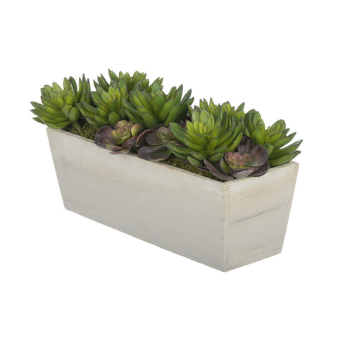 Artificial Succulent Garden in Washed Wood Ledge