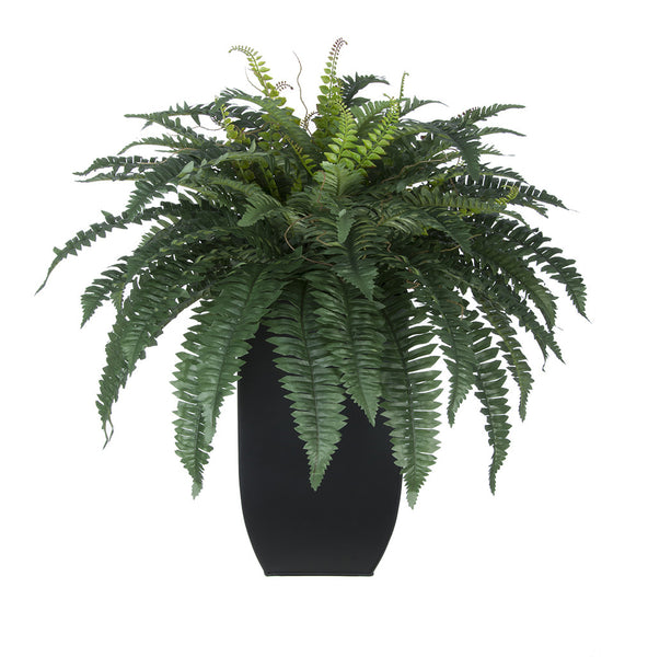 Artificial Fern in Tapered Zinc Planter