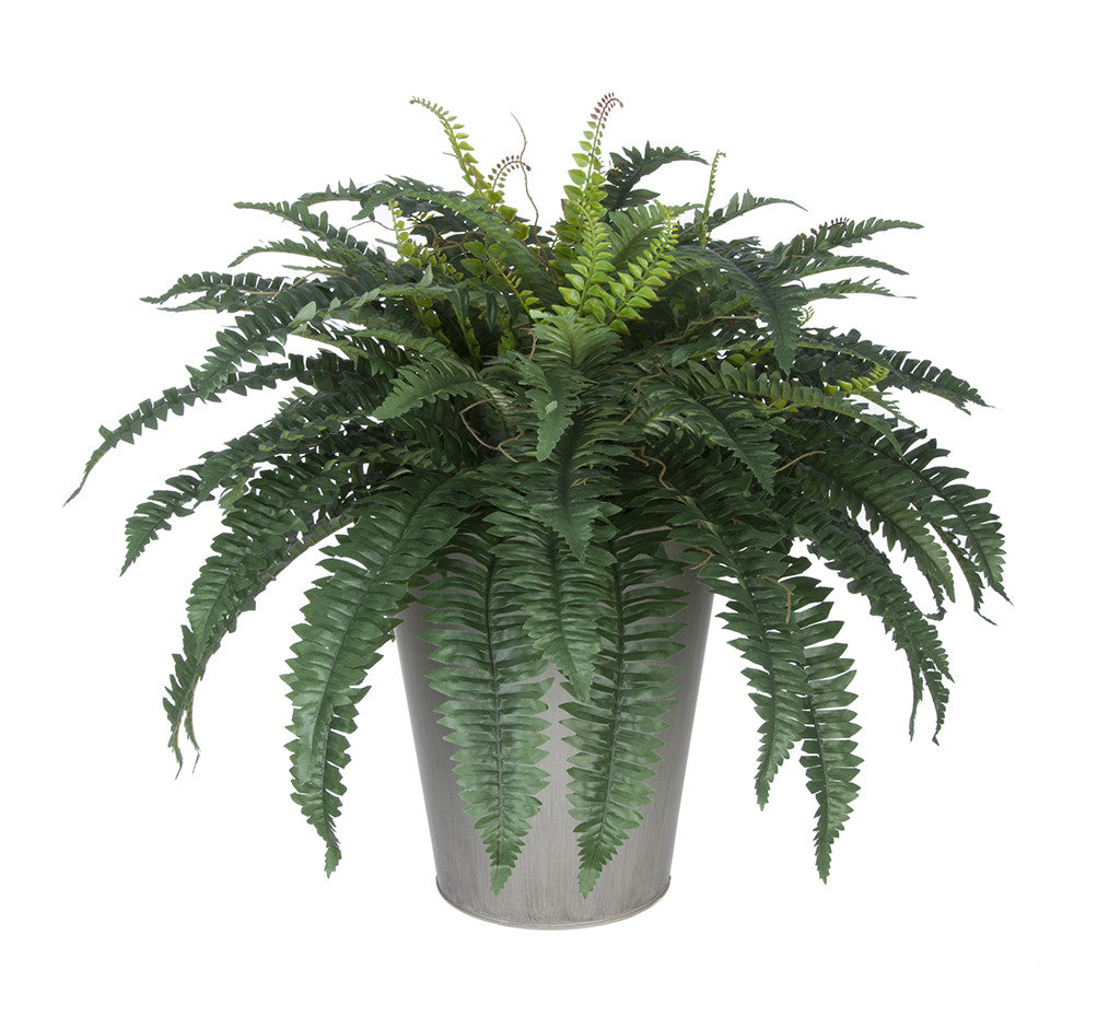 Artificial Fern in Round Zinc Planter - House of Silk Flowers®  - 2