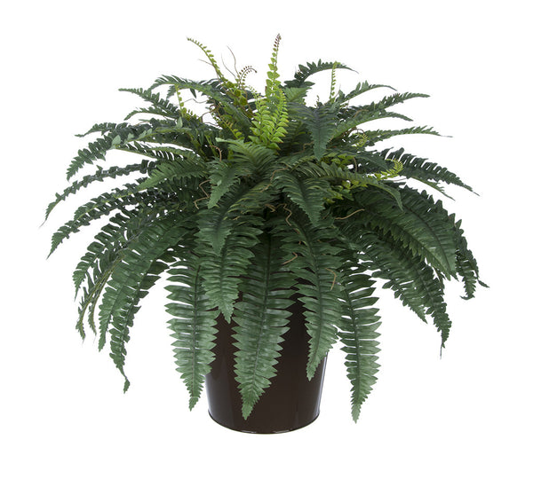Artificial Fern in Round Zinc Planter