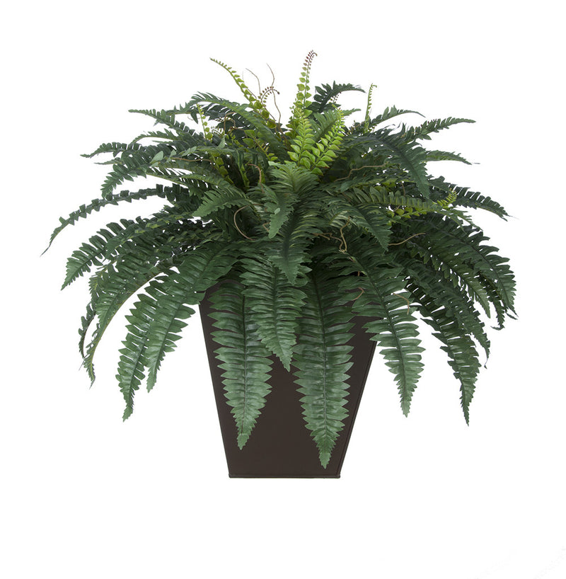 Artificial Fern in Square Zinc Planter - House of Silk Flowers®  - 3