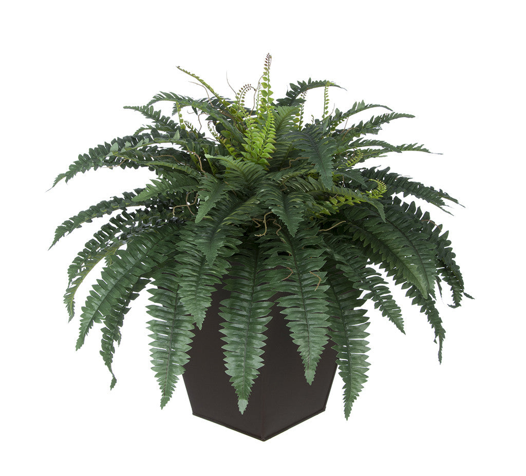 Artificial Fern in Square Zinc Planter - House of Silk Flowers®  - 4