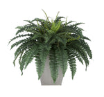 Artificial Fern in Square Zinc Planter - House of Silk Flowers®  - 5