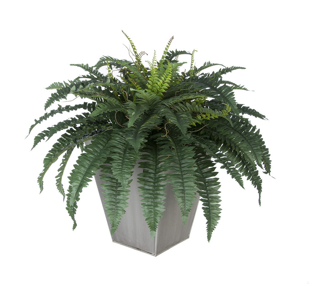 Artificial Fern in Square Zinc Planter - House of Silk Flowers®  - 6