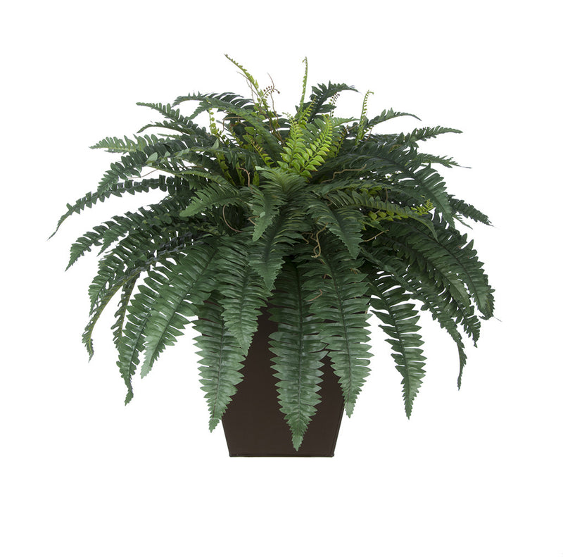 Artificial Fern in Square Zinc Planter - House of Silk Flowers®  - 7
