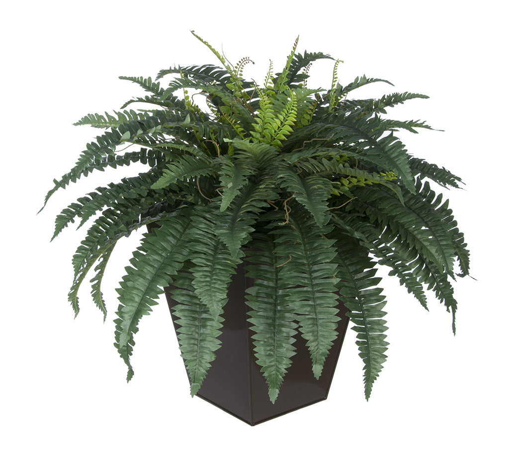 Artificial Fern in Square Zinc Planter - House of Silk Flowers®  - 8