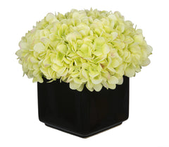 Artificial Hydrangea in Large Black Cube Ceramic - House of Silk Flowers®  - 9