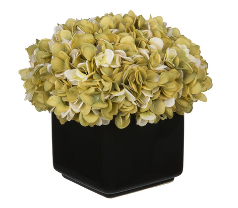 Artificial Hydrangea in Large Black Cube Ceramic