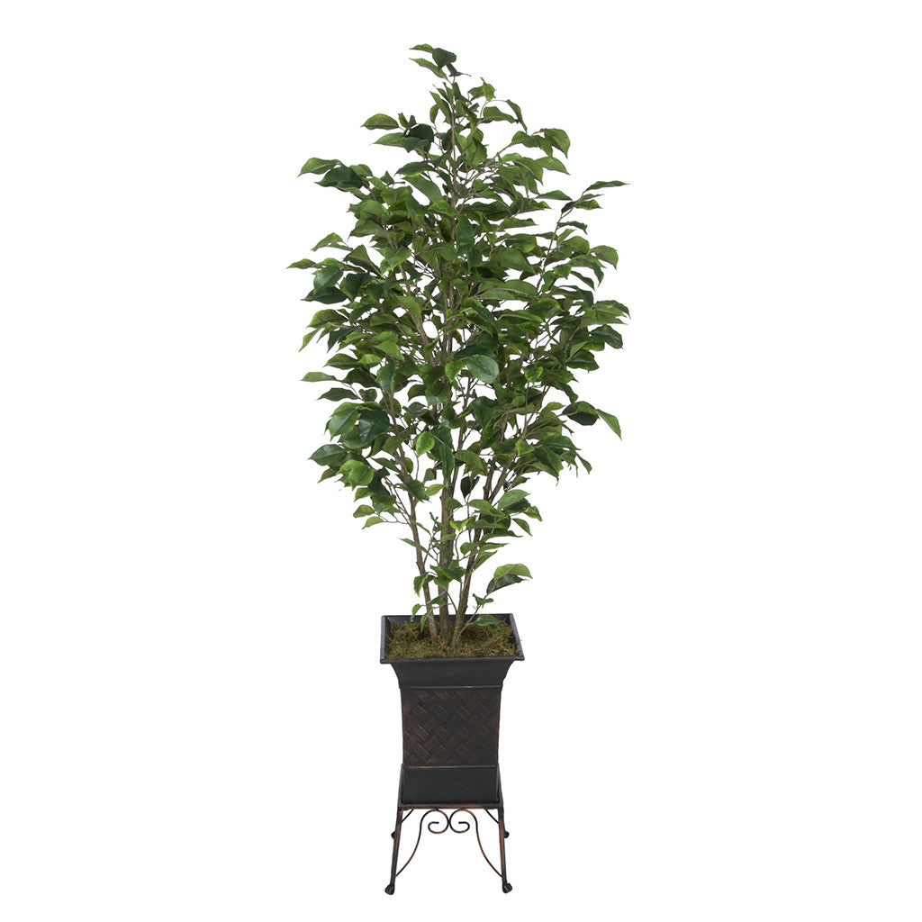 Artificial Green Ficus in Small Planter Stand House of Silk Flowers®