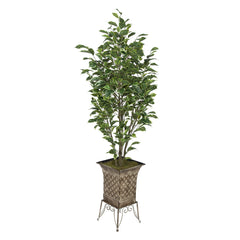 Artificial Variegated Ficus in Small Planter Stand