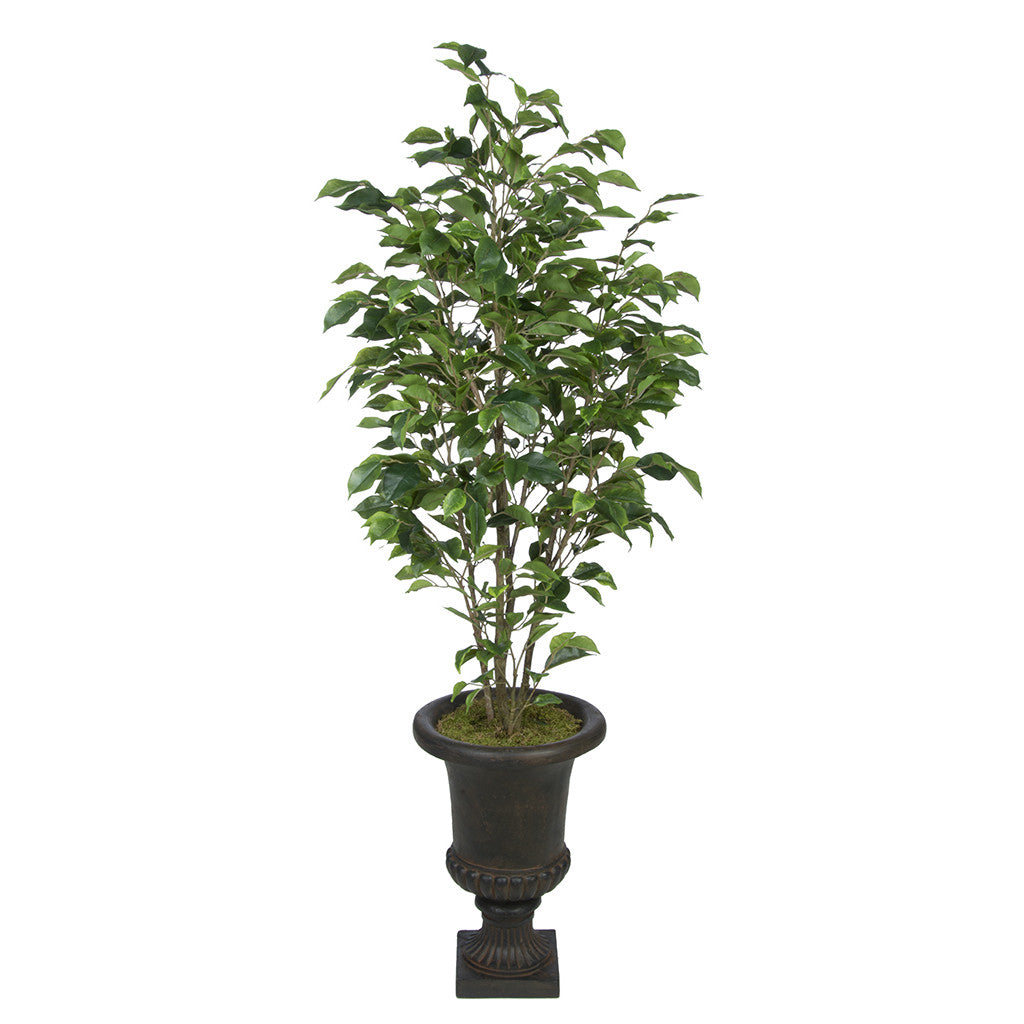Artificial Ficus in Antiqued Brown Urn