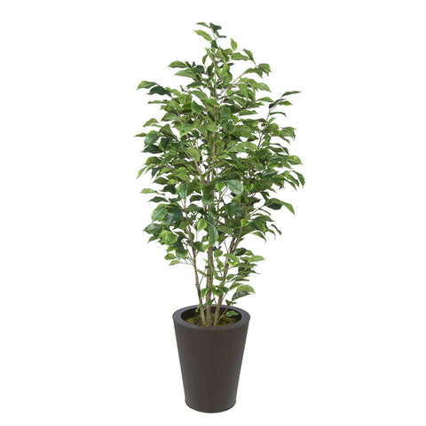 Artificial Green Ficus in Round Zinc