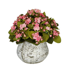 Artificial Kalanchoe in Distressed Cement Vase - House of Silk Flowers®  - 2