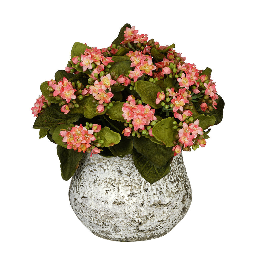 Artificial Kalanchoe in Distressed Cement Vase - House of Silk Flowers®  - 3