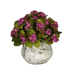 Artificial Kalanchoe in Distressed Cement Vase - House of Silk Flowers®  - 4