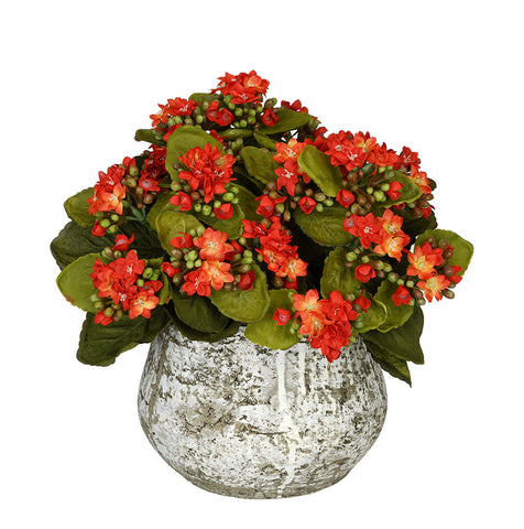 Artificial Kalanchoe in Distressed Cement Vase