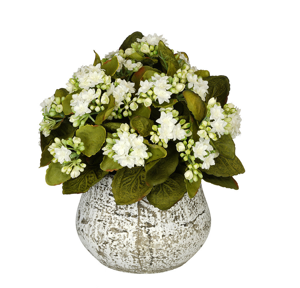 Artificial Kalanchoe in Distressed Cement Vase - House of Silk Flowers®  - 8