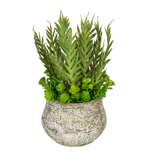 Artificial Succulent Garden in Distressed Cement Vase