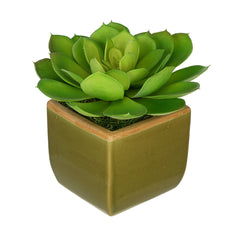 Artificial Echevaria Succulent in Olive Green Ceramic Vase - House of Silk Flowers®  - 1