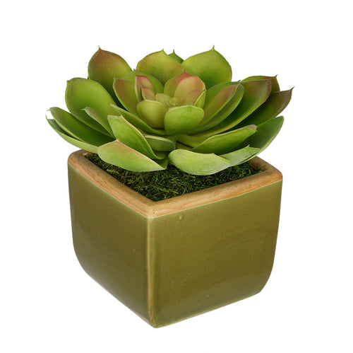 Artificial Echevaria Succulent in Olive Green Ceramic Vase - House of Silk Flowers®  - 3