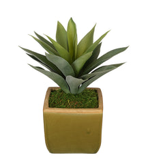 Artificial Succulent in Olive Green Ceramic Vase - House of Silk Flowers®  - 2