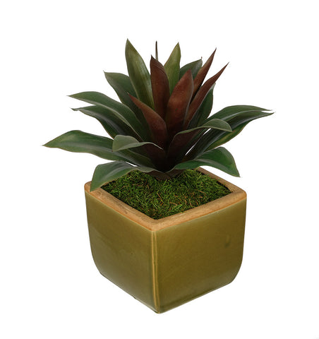 Artificial Succulent in Olive Green Ceramic Vase