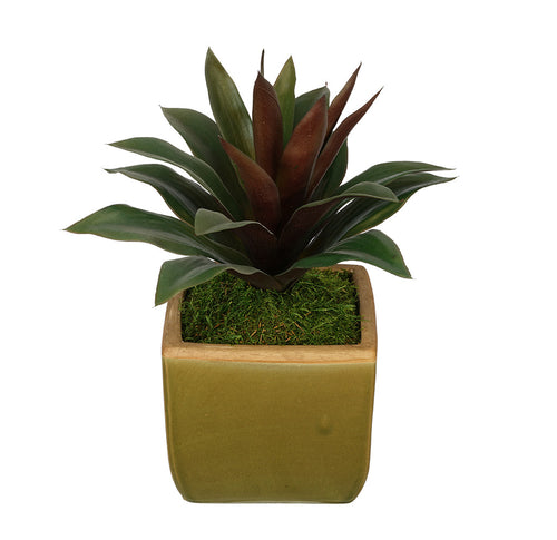 Artificial Succulent in Olive Green Ceramic Vase - House of Silk Flowers®  - 4