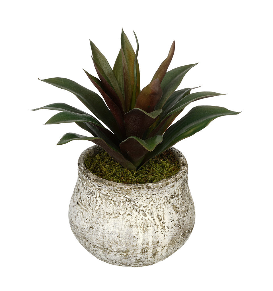 Artificial Succulent in Distressed Cement Vase - House of Silk Flowers®  - 2