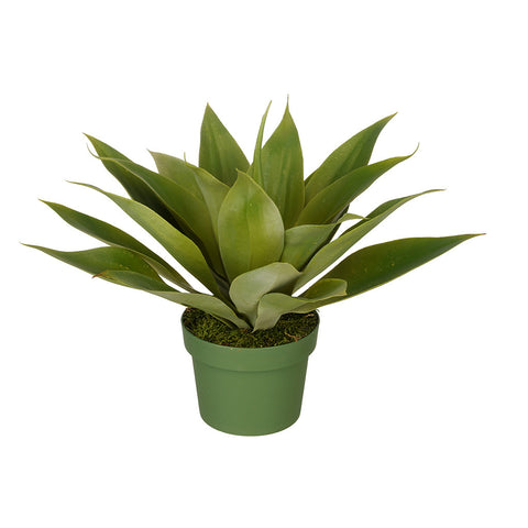 Artificial Agave Succulent