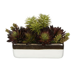 Artificial Succulent Garden in Gold/White Ceramic Rectangle