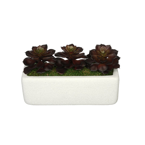Artificial Echeveria Garden in Sandy-Texture Rectangle
