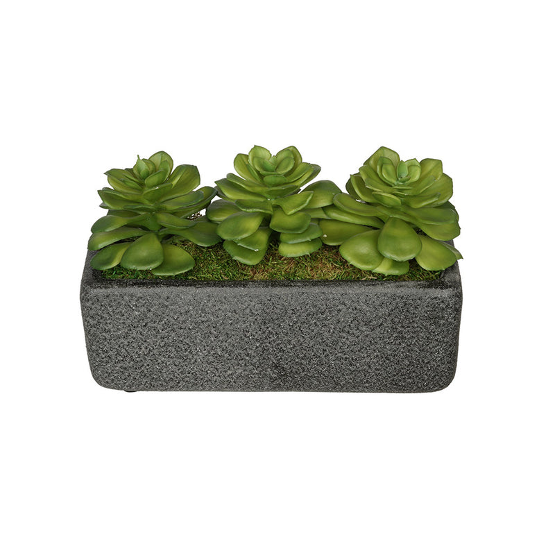 Artificial Echeveria Garden in Sandy-Texture Rectangle House of Silk Flowers®