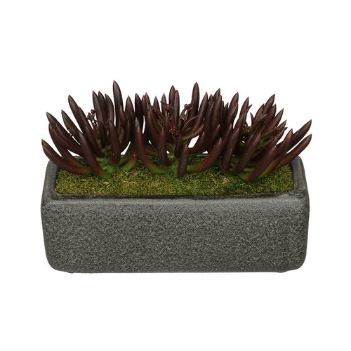 Artificial Senecio Garden in Sandy-Texture Rectangle