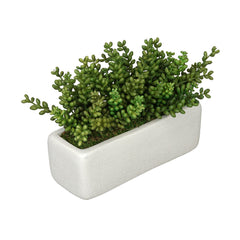 Artificial Sedum Garden in Sandy-Texture Rectangle
