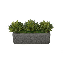 Artificial Pointed Echeveria Garden in Sandy-Texture Rectangle