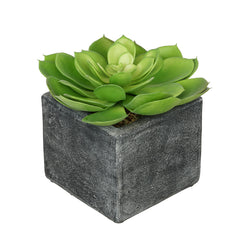 Artificial Green Echeveria in Grey Wash Cube Ceramic